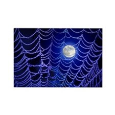 Night Web Rectangle Magnet