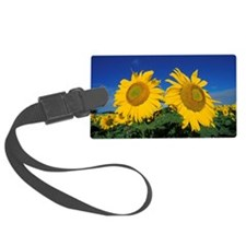 2 sunflowers Luggage Tag