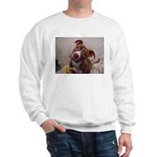 Cool Pittie Sweatshirt