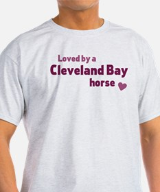 Cleveand Bay horse T-Shirt