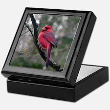Male Cardinal 2 Keepsake Box