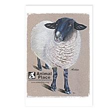 AidenAEdges1-150 Postcards (Package of 8)