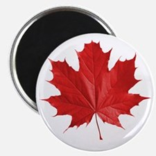 red maple leaf t-shirt Magnet