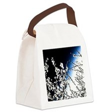 warmth awaits-watermarked Canvas Lunch Bag