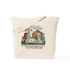 intact-tshirtsize Tote Bag
