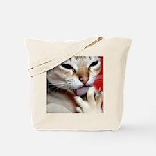 DSCafe303 Tote Bag