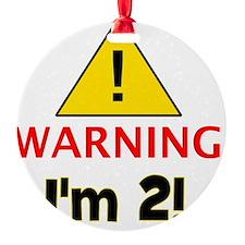warningim2 Ornament