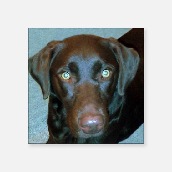 """Labrador Retriever Square Sticker 3"""" x 3"""""""