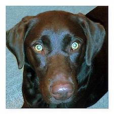 """Labrador Retriever Square Car Magnet 3"""" x 3"""""""