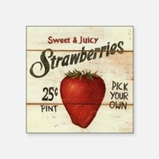 "strawberries-posters Square Sticker 3"" x 3"""