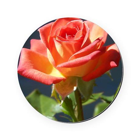 rose 10x10_apparel Round Coaster