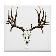Mule deer skull mnt. Tile Coaster