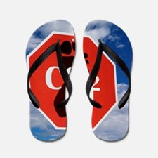 Global Warming  Flip Flops