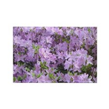 Purple Flowers Rectangle Magnet