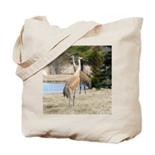 SandCrTile Tote Bag
