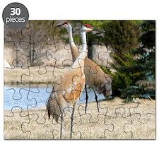 SandCrTile Puzzle