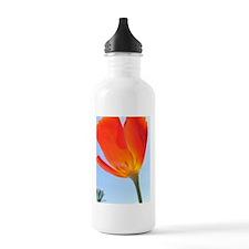 MP21fs Water Bottle