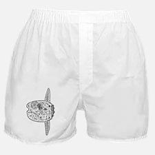 Mola Boxer Shorts