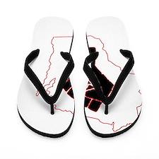 Wisconsin-2 Flip Flops