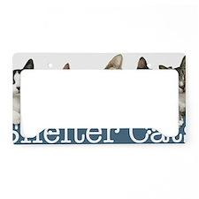 eCatStripTYPE2Lite License Plate Holder