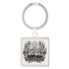 Twilight Apotamkin Square Keychain
