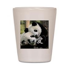 Chinese Love Little Pandas Shot Glass