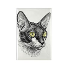 Cornish Rex for darks Rectangle Magnet