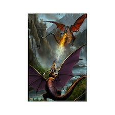 459_ipad_case-DragonsPlay-01 Rectangle Magnet