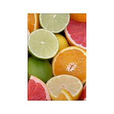 fruit14 Rectangle Magnet