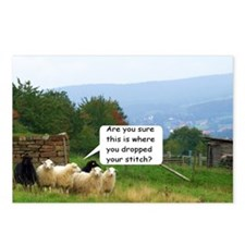 Drop Stitch Sheep Postcards (Package Of 8)
