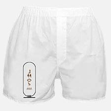 "Byron in Hieroglyphics ""Color Boxer Shorts"