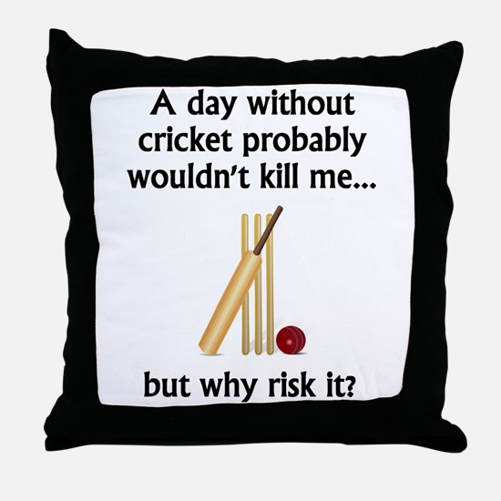 A Day Without Cricket Throw Pillow