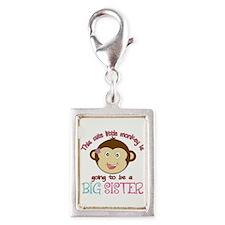Cute Monkey Big Sister Silver Portrait Charm