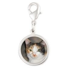Heystack Kitty Charms