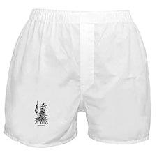 Weed Boxer Shorts