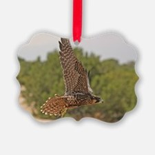 Peregrine Falcon Ornament