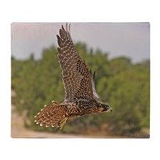 Peregrine Falcon Throw Blanket