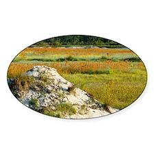 2-Abandoned Bog - Print Decal