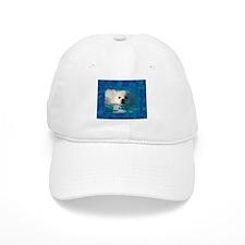 American Eskimo Dog Baseball Cap