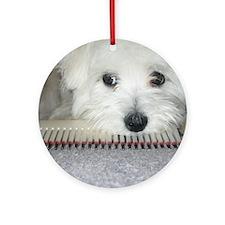 Sadie Round Ornament