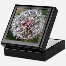 Dandelion Seed Head Keepsake Box