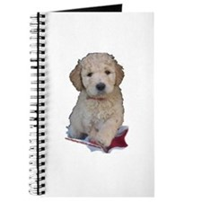 Labradoodle puppies Journal