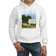 Drop Stitch Sheep Hoodie