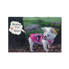 Blowing U Kisses Frenchie Rectangle Magnet