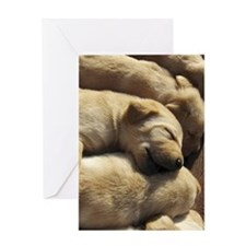 SleepingPups_Labrador_Pups4 Greeting Card
