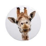 Giraffe Seasonal