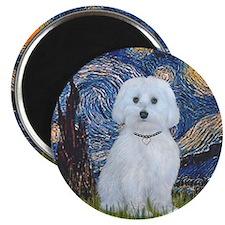 Starry Night - Maltese (B) - square Magnet