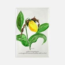 yellow ladyslipper flower Rectangle Magnet