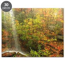 Autumn Waterfall Puzzle