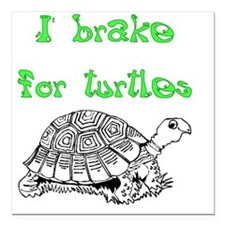 "IBrake4TurtlesDark Square Car Magnet 3"" x 3"""